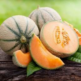 Melone retato Bio 2 kg